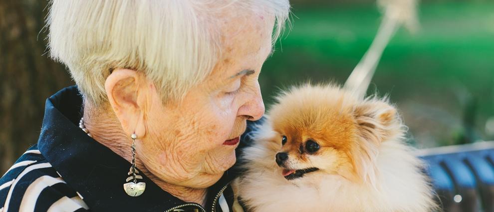 best-dog.jpg