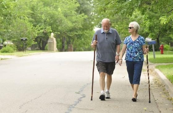 Walking_with_walking_sticks.jpg