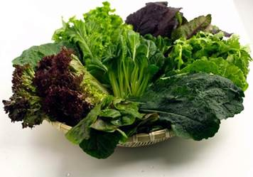 Eskaton_Weekly_Wellness_Lettuce.jpg